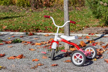 A red and white tricycle is parked outside in a park on gravel. The trike is surrounded by fallen leaves, showing the autumn season. Stock fotó