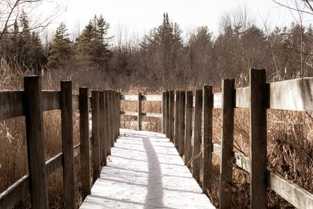 A wooden boardwalk through a marsh area on a nature trail has seen snowfall and is s in seen in afternoon shadows.