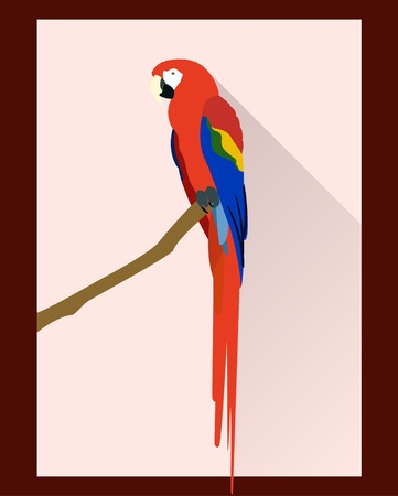 macaw: Macaw parrot in flat style - vector illustration