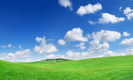 Idyllic grassland, spring landscape, rolling green fields, blue sky and white clouds in the background