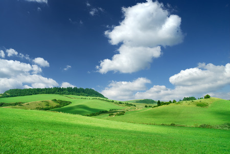 Landscape, view of green rolling fields, blue sky and white clouds in the background Imagens