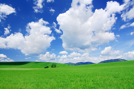 Landscape with green fields, blue sky and white clouds in background 免版税图像