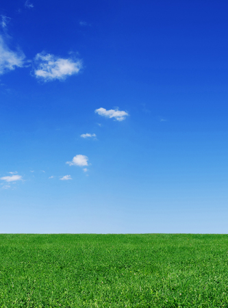 Idyllic spring landscape, green field, blue sky and white clouds in the background