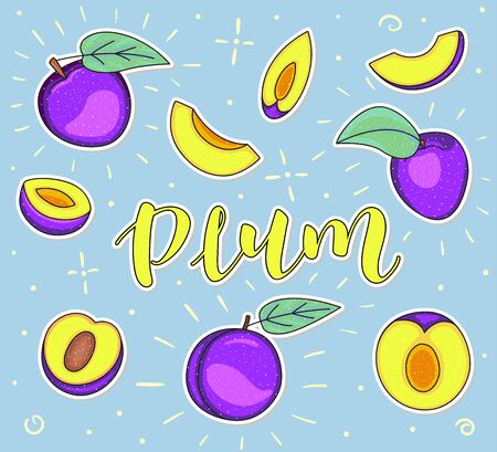 Plum. Whole and pieces. Vector stock illustration. Colored fruit set isolated on blue background. Lettering