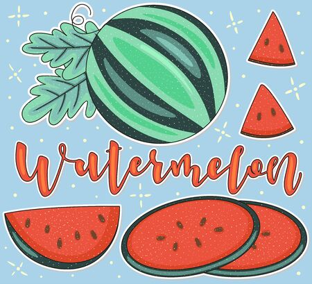 Watermelon Whole and pieces. Vector stock illustration. Colored fruit set using doodle art on blue background. Lettering