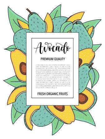 Vector background with avocado, whole and pieces. Vector stock illustration isolated on white background. Card design with fruits. Product information and lettering.