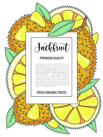 Vector background with jackfruit, whole and pieces. Vector stock illustration isolated on white background. Card design with fruits. Botanical garden template. Product information and lettering.  イラスト・ベクター素材