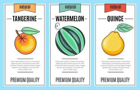 Fresh fruit banner set. Tangerine, watermelon, quince - lettering and illustration. Vector stock food and drink design.