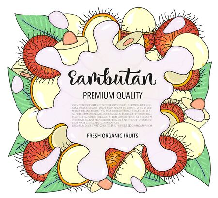 Vector background with rambutan, whole and pieces. Vector stock illustration isolated on white background. Card design with fruits. Splash of water or milk. Product information and lettering. Illustration
