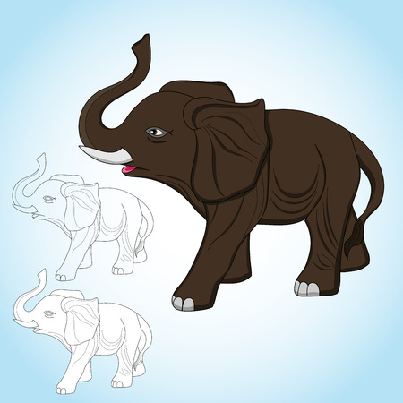 Elephants are large mammals of the family Elephantidae in the order Proboscidea. Three species are currently recognised: the African bush elephant, the African forest elephant, and the Asian elephant.