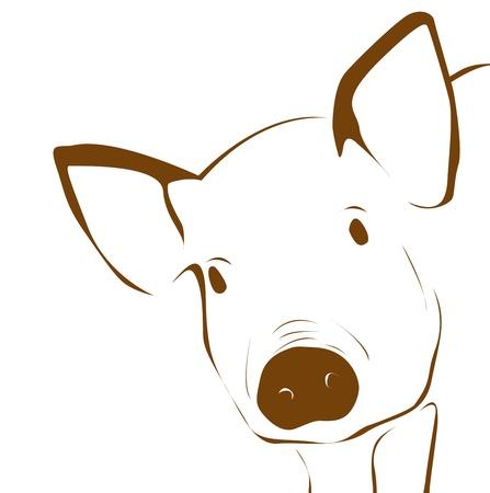 Illustration of young pig - close up  Reklamní fotografie