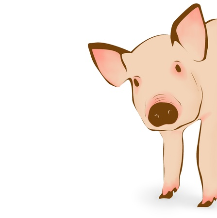 Cute pink pig illustration  illustration