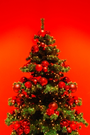 Christmas and all things related to it. Stock Photo - 24647043