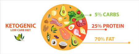 Keto diet food diagram circle chart. Ketogenic info graphic pie of healthy nutrition. Vector illustration banner with low-carb diet macros basic information of dietic products with data indicators.