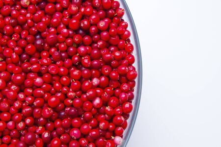 cowberry: a part of cowberry cup