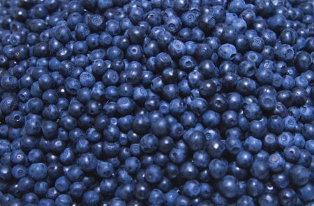 wildberry: Bilberries facture Stock Photo
