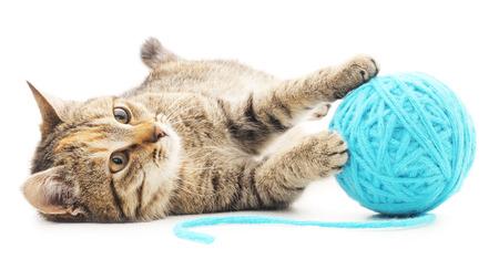 작은 재미 있은 새끼 고양이 및 스레드의 줄거리. 흰색 배경에 고립