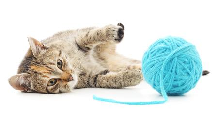 Petit chaton dr?le et point d'?coute de fil. Isol? sur fond blanc