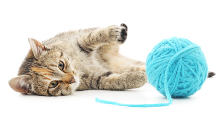 Small funny kitten and clew of thread . Isolated on white background Imagens - 37530574