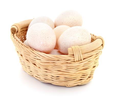 Turkeys eggs in basket isolated on white background.