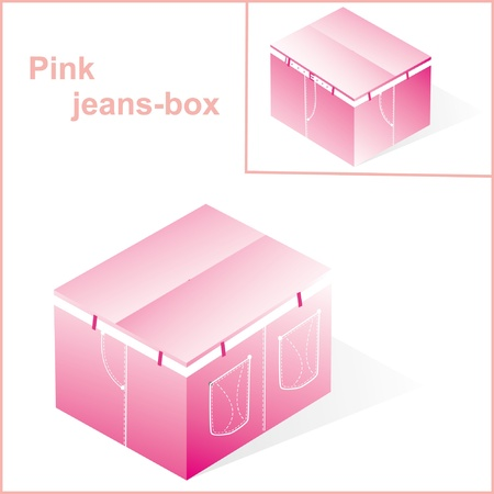 overnight delivery: box, cardboard  for pink jeans or pants packing, with denim lines style, closed