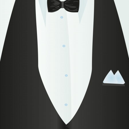 Suit, classic, blue shirt, black bow-tie, black vest in close-up  Business style  Mail costume close-up, background