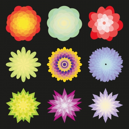 Flowers set of different colors on a black background.  Vector