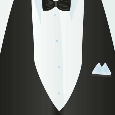 neckcloth: Suit, classic, blue shirt, black bow-tie, black vest in close-up. Business style. Mail costume close-up, background.Vector illustration.