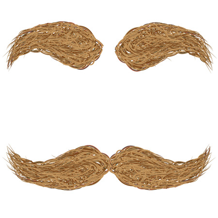 mustache and eyebrows, brown, vector illustration Stock Photo