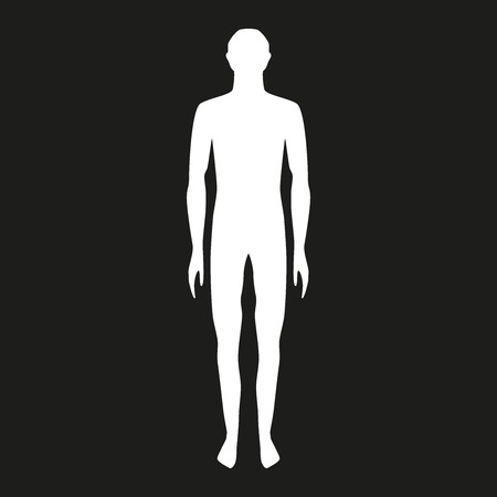 male body shapes. human body outline. vector illustration. full body on a black background. biology body structure. illustration