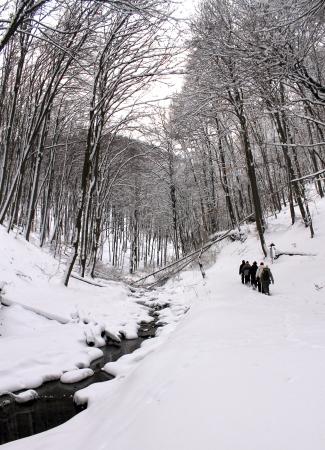 runnel: winter hikers Stock Photo
