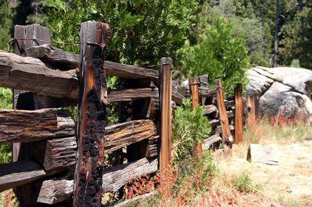 fenceline: Cedar fence Stock Photo