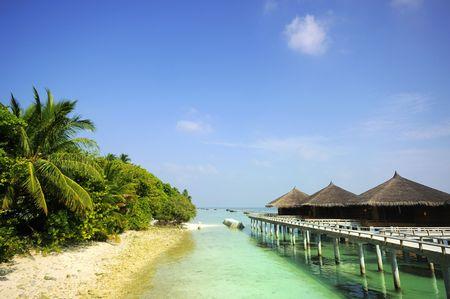 beach scene of maldives photo