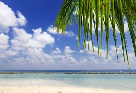 beach scene at maldives