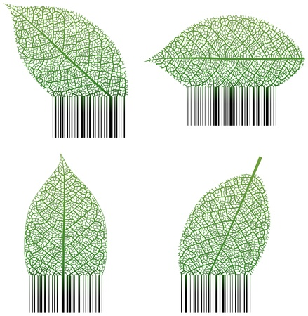 Leaf Barcode Stock Vector - 15802166
