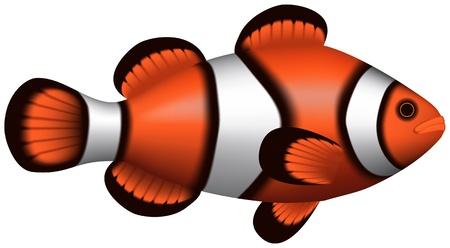 Layered illustration of isolated Clownfish with white background