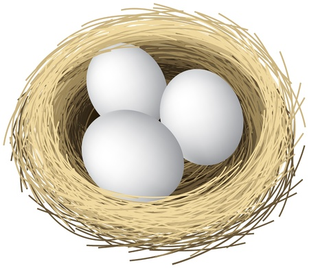 Ilustración en capas de huevos de nidos