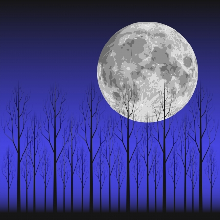 Layered illustration scene of moon and tree  Vector