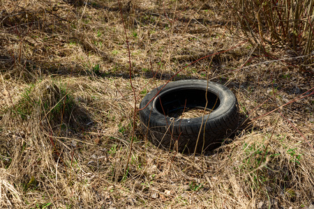 Old used car tire at illegal landfill in park. Environment pollution concept