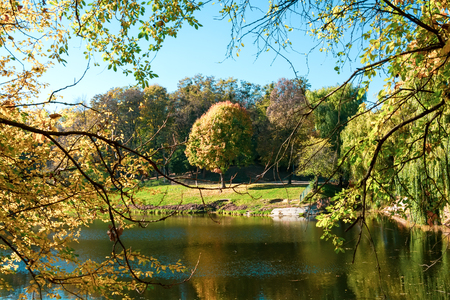 Autumn trees with multicolored leaves with view to the lake. Stockfoto
