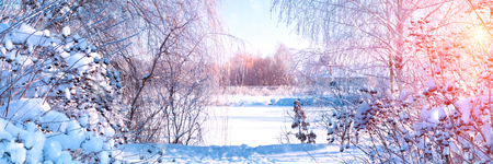 Banner 3:1. Winter landscape. Winter road and trees covered with snow. Sky and sunlight through the frozen tree branches. Copy space. Soft focus Stockfoto