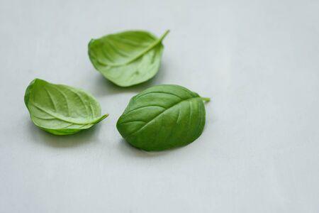 Liście bazylii na szarym tle. Zdrowa żywność lub koncepcja gotowania. Skopiuj miejsce