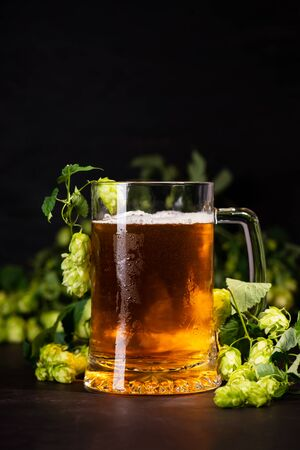 Mug of beer with hop cones on dark wooden background. October fest background