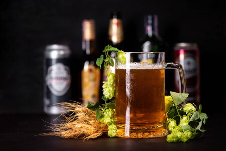 Mug of beer with wheats and hop cones against beer bottles and jars on dark wooden background. October fest background
