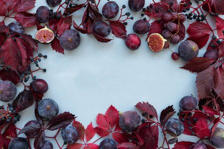 Frame of purple girlish (wild) grape leaves, grapes, plums and figs on gray wooden background. Top view. Flat lay. Autumn harvesting or Thanksgiving celebration concept.