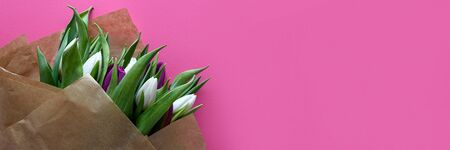 Banner 3:1. Bouquet of white and purple tulips on pink background. Top view. Flat lay. Copy space. Valentines day, mothers