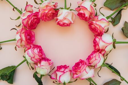 Heart shape frame from fresh pink roses on pink background. Top view. Flat lay. Copy space. Valentines day, mothers day or birthday celebration concept