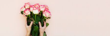 Banner 3:1. Hands holding bouquet of fresh pink roses wrapped pink ribbon on pink background. Top view. Flat lay. Copy space. Valentines day, mothers day or birthday celebration concept