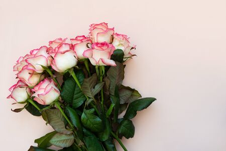 Bouquet of fresh pink roses on pink background. Top view. Flat lay. Copy space. Valentines day, mothers day or birthday celebration concept Stok Fotoğraf