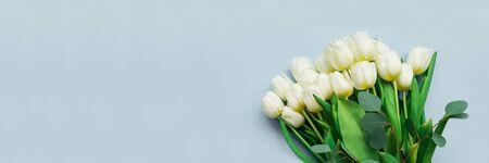 横幅3:1。灰色背景上白色郁金香花束。情人节,母亲节,3月8日或生日庆祝的概念